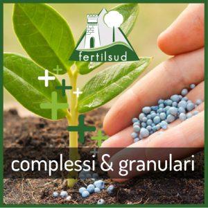 Complessi & Granulari