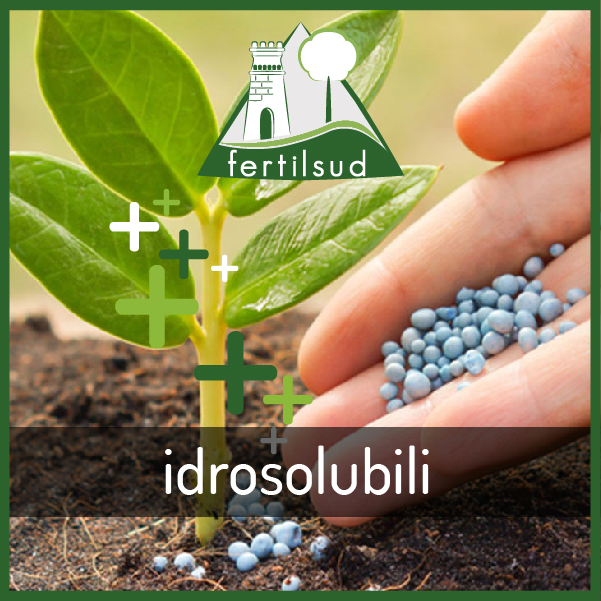 Idrosolubili